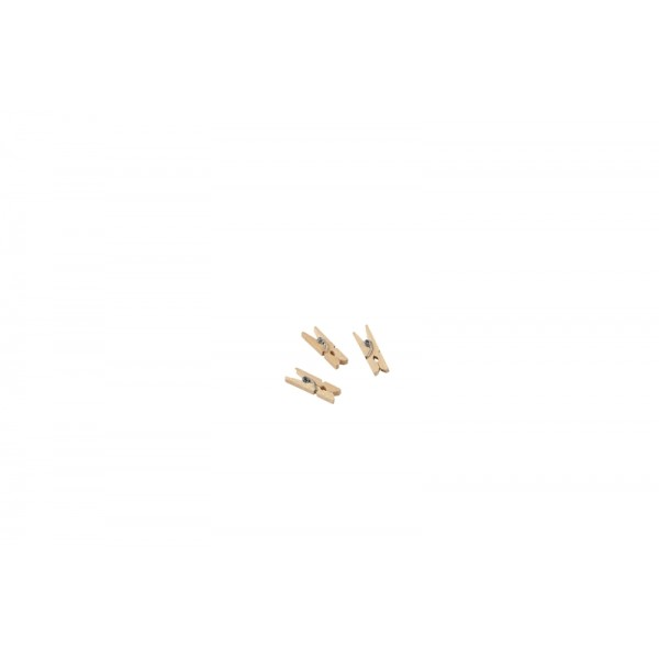 """Miniature Wooden Pegs 2.5cm/1""""  (1000pcs)"""